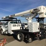 Tree Service Boom Truck