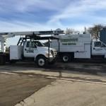 Tree Service Trucks